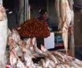 В Кабуле подорожали продукты