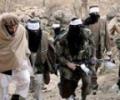 Исламское государство и Талибан: Враги или будущие союзники?