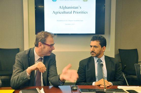 США и Всемирный Банк поддержат сельское хозяйство Афганистана
