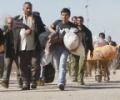 Трагедия с афганскими мигрантами требует от Ирана решительности