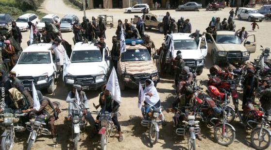 Движение Талибан