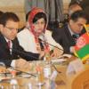 Российско-афганское торгово-экономическое сотрудничество набирает обороты