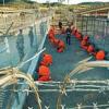Свидетели пыток из Гуантанамо