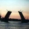 Уголовное дело по факту драки на петербургском рынке «Апрашка» не возбуждено