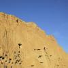 В Афганистане найдены фрески с персонажами персидской мифологии