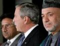 Афганистан и Пакистан не поделили бен Ладена