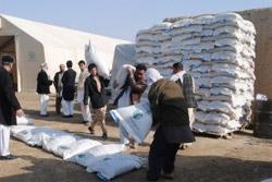 Более 5,2 тыс. афганских производителей молочной продукции получат помощь от правительства